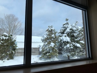 Chemo room with a view